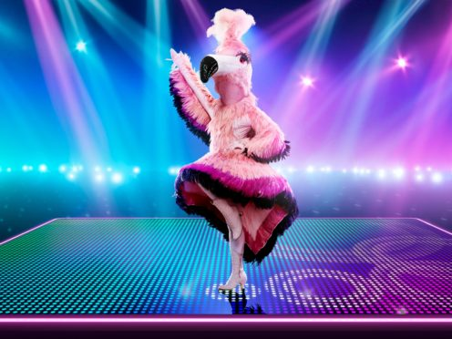 Flamingo on The Masked Dancer (ITV/PA)