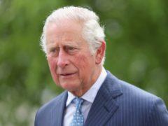 The Prince of Wales has praised the work of nurses (Chris Jackson/PA)