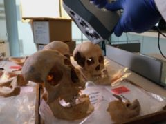 A scientist controls a 3D scanner over the alleged remains of bones of Christopher Columbus and family members, in the Anthropology Laboratory at Granada University in Spain (AP)