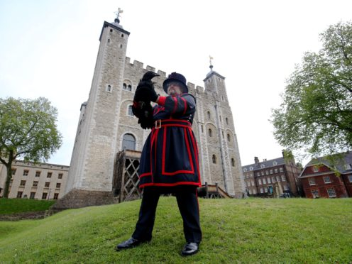 Raven master Chris Skaife holds aloft Branwen, one of the two latest additions to the tower's conspiracy of ravens (Jonathan Brady/PA)