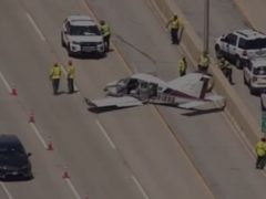 The plane came down south of Chicago (Screengrab/ABC)