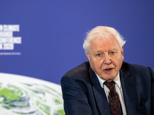 Sir David Attenborough urged G7 leaders to demonstrate the 'global will' to tackle climate change (PA)