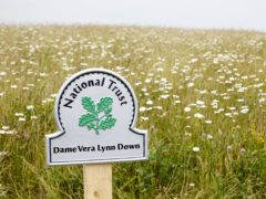A meadow on the famous White Cliffs of Dover which has been renamed in memory of Dame Vera Lynn (Arnhel De Serra/National Trust/PA)