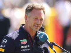 Christian Horner insists he has no vendetta against Lewis Hamilton (Tim Goode/PA)