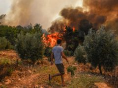 Wiildfires in Kacarlar village near the Mediterranean coastal town of Manavgat, Antalya, Turkey (AP Photo)
