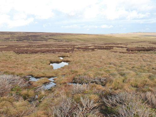 Studying how bogs 'breathe' could help monitor efforts to restore peatlands (West Arkengarthdale Moor/PA)