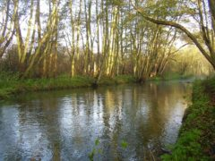 A section of the Upper Bure chalk stream in Norfolk is to be restored to its former glory in a conservation project (National Trust/PA)