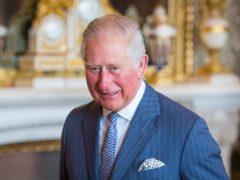 The Prince of Wales (Dominic Lipinski/PA)