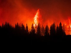 Flames from the Dixie Fire crest a hill in Lassen National Forest (AP)