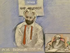 Court artist sketch by Elizabeth Cook of Julian Assange appearing by video link at the High Court in London (PA)
