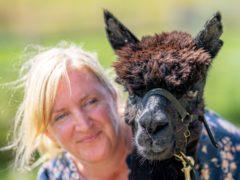 Geronimo the alpaca and his owner Helen Macdonald (Ben Birchall/PA)