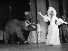 Josephine Baker appears on stage with a young elephant during a 1968 gala premiere at the Olympia Theatre in Paris (AP)