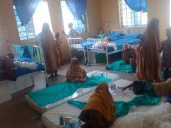 Freed students from Salihu Tanko Islamic School in Nigeria (AP)