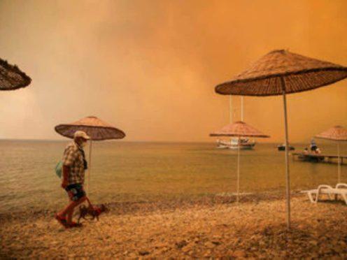 Wildfires near the beach in Bodrum, Turkey (Emre Tazegul/AP)