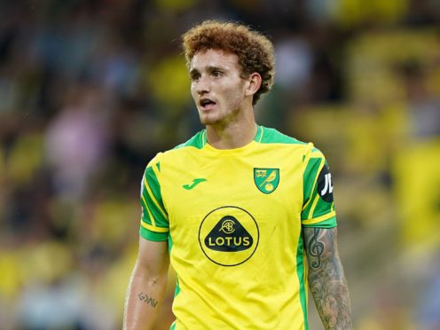 Norwich forward Josh Sargent picked up a hamstring problem while on international duty (Joe Giddens/PA)