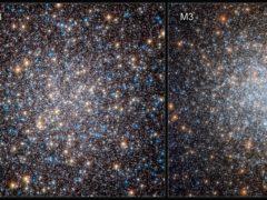 Hubble discovers hydrogen-burning white dwarfs enjoying slow ageing (ESA/Hubble and Nasa/G Piotto et al/PA)