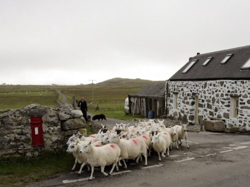 Crofting is an integral part of life in the Highlands and Islands of Scotland (Andrew Milligan/PA)