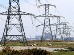 The grid needs to be balanced to keep the lights on (Gareth Fuller/PA)