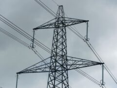 Electricity networks charge suppliers, who pass on the cost to households (Peter Byrne/PA)