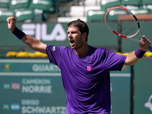 Cameron Norrie is the new British number one (Mark J. Terrill/AP)