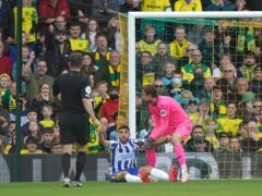 Neal Maupay (centre) appealed for a penalty during Brighton's match at Norwich (Joe Giddens/PA)