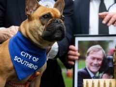 Sir David Amess' French Bulldog, Vivienne is announced as the winner of the Westminster Dog of the Year competition (David Parry/PA)