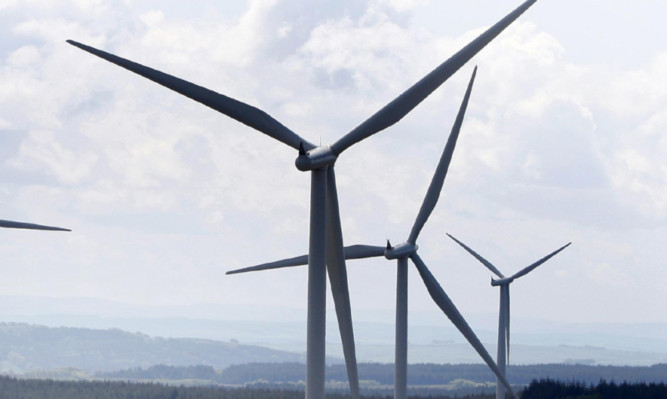 There are claims the windfarms pose a risk to birds, including rare species.