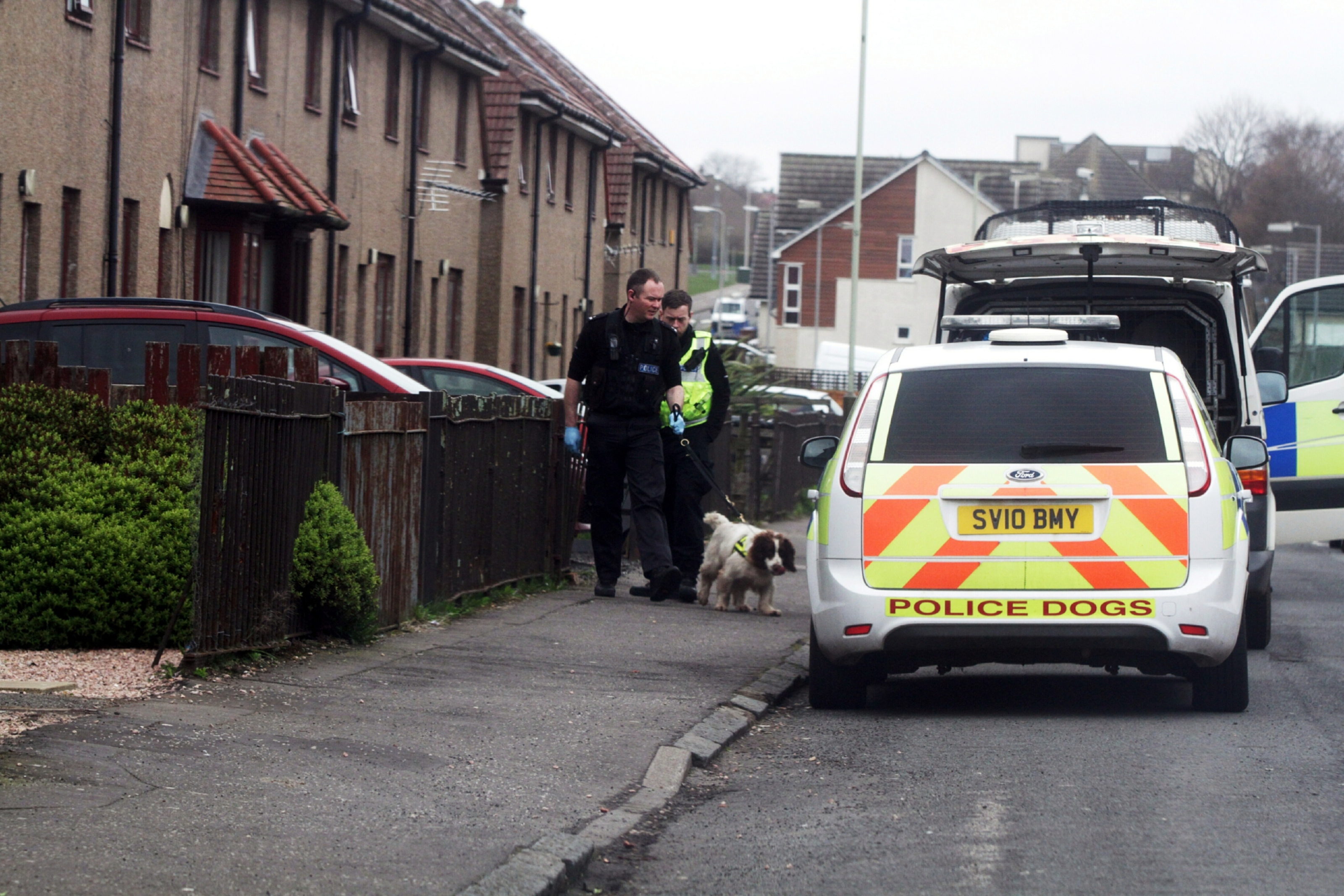 Officers and a police dog at Beauly Avenue for a drugs search warrant.