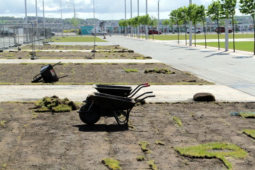 Large patches of grass are being torn up again at the Waterfront.