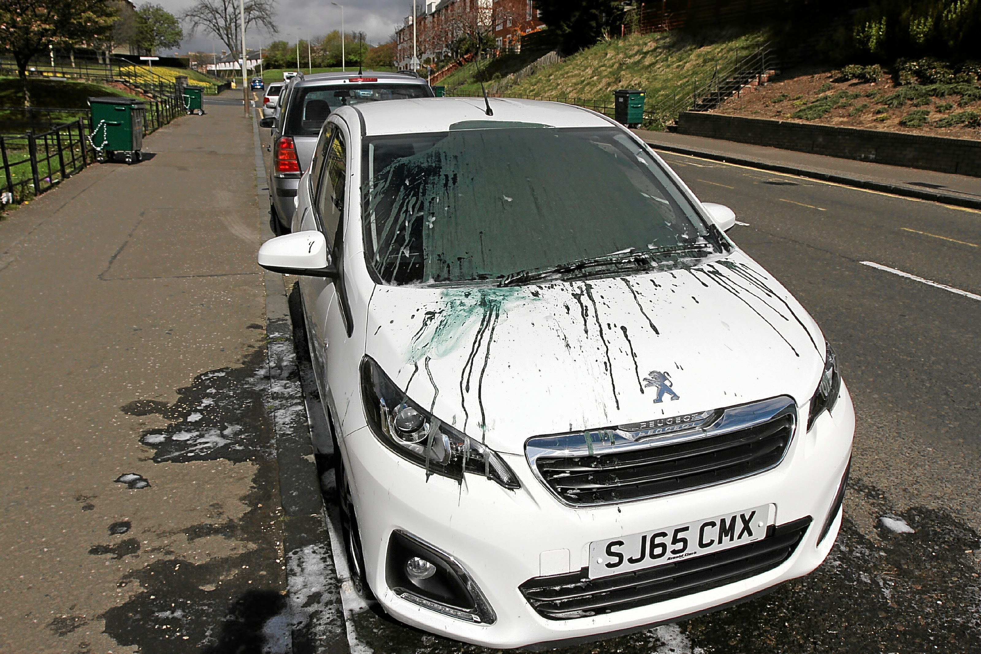 The woman's Peugeot which was targeted by a vandal. Green paint was thrown over the front and roof of the car.