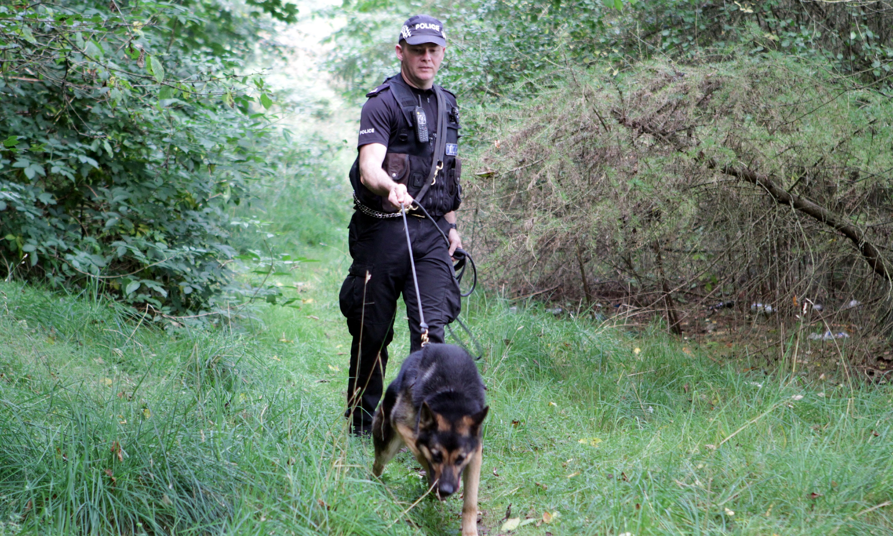 PC Galloway and Nipper on a training exercise