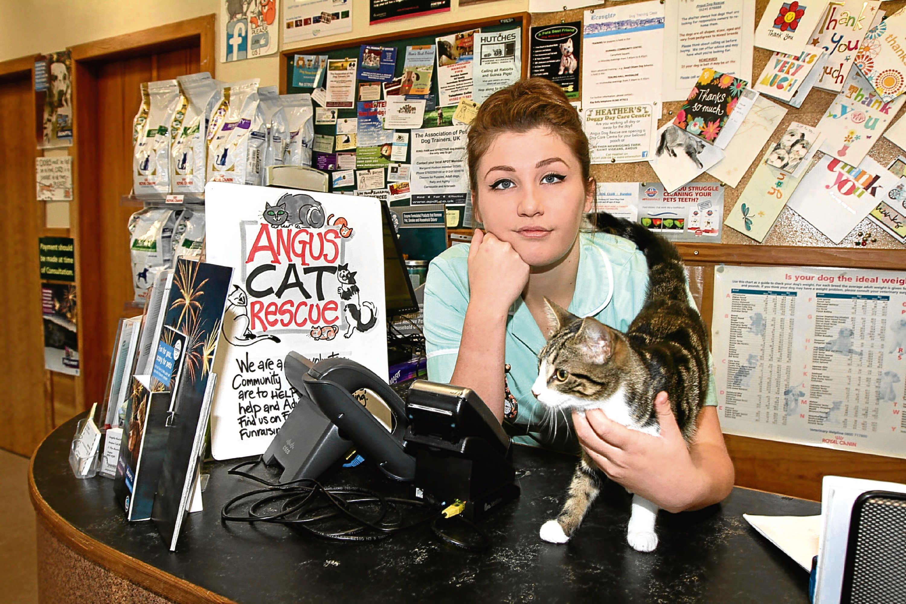 Animal care assistant Emily Brough with Smudge. A charity box was taken from the veterinary practice.