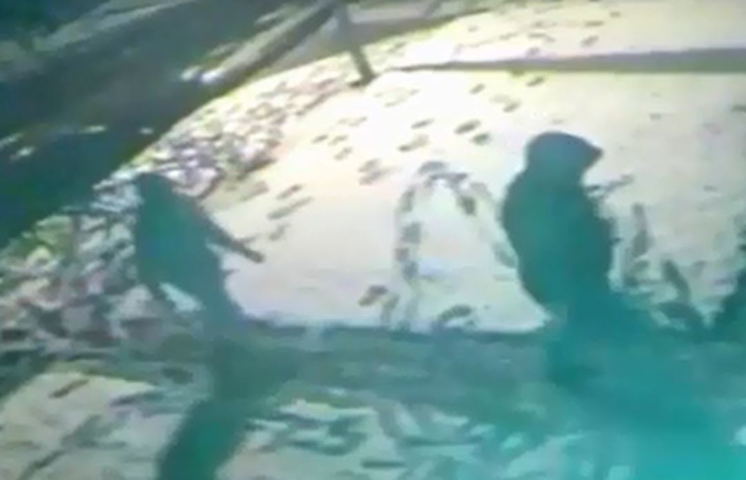 A still from CCTV released by police shows the raiders approaching the home.