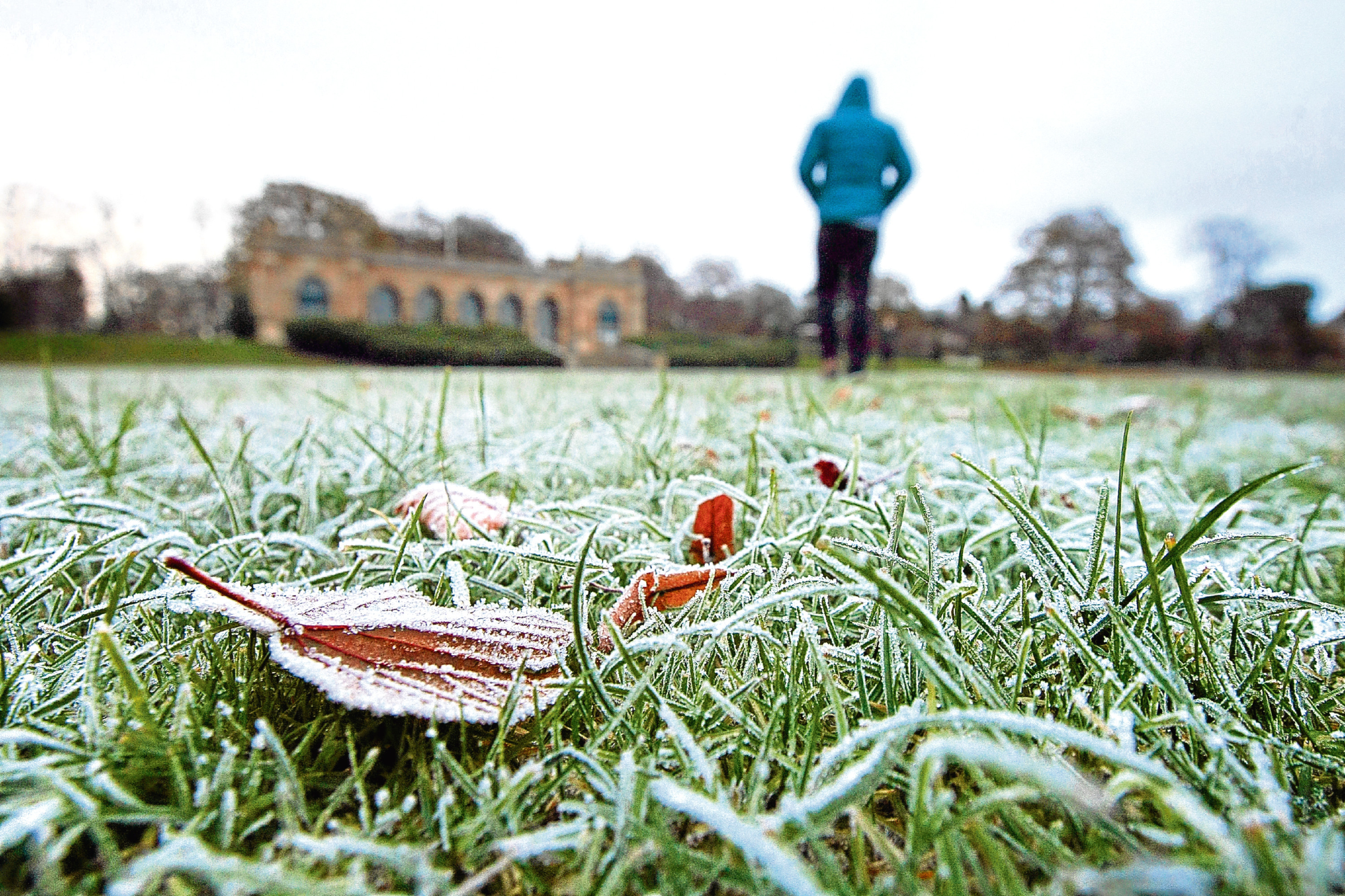 January was one of the driest since records began according to forecasters.