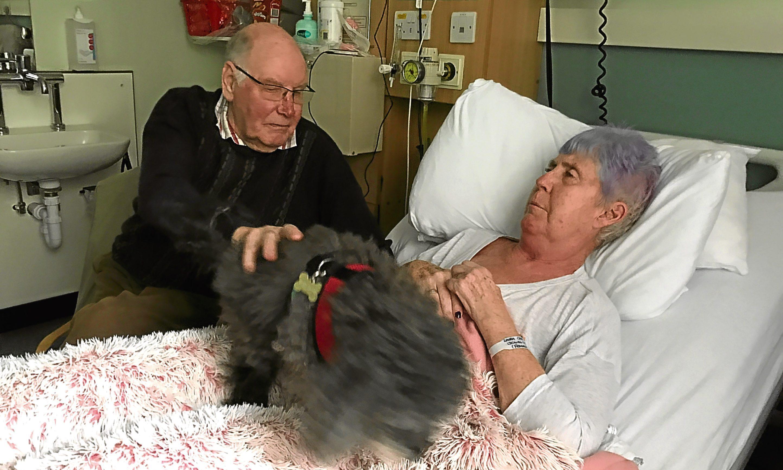 Laura Cree with husband Bob and dog Tigger in hospital.