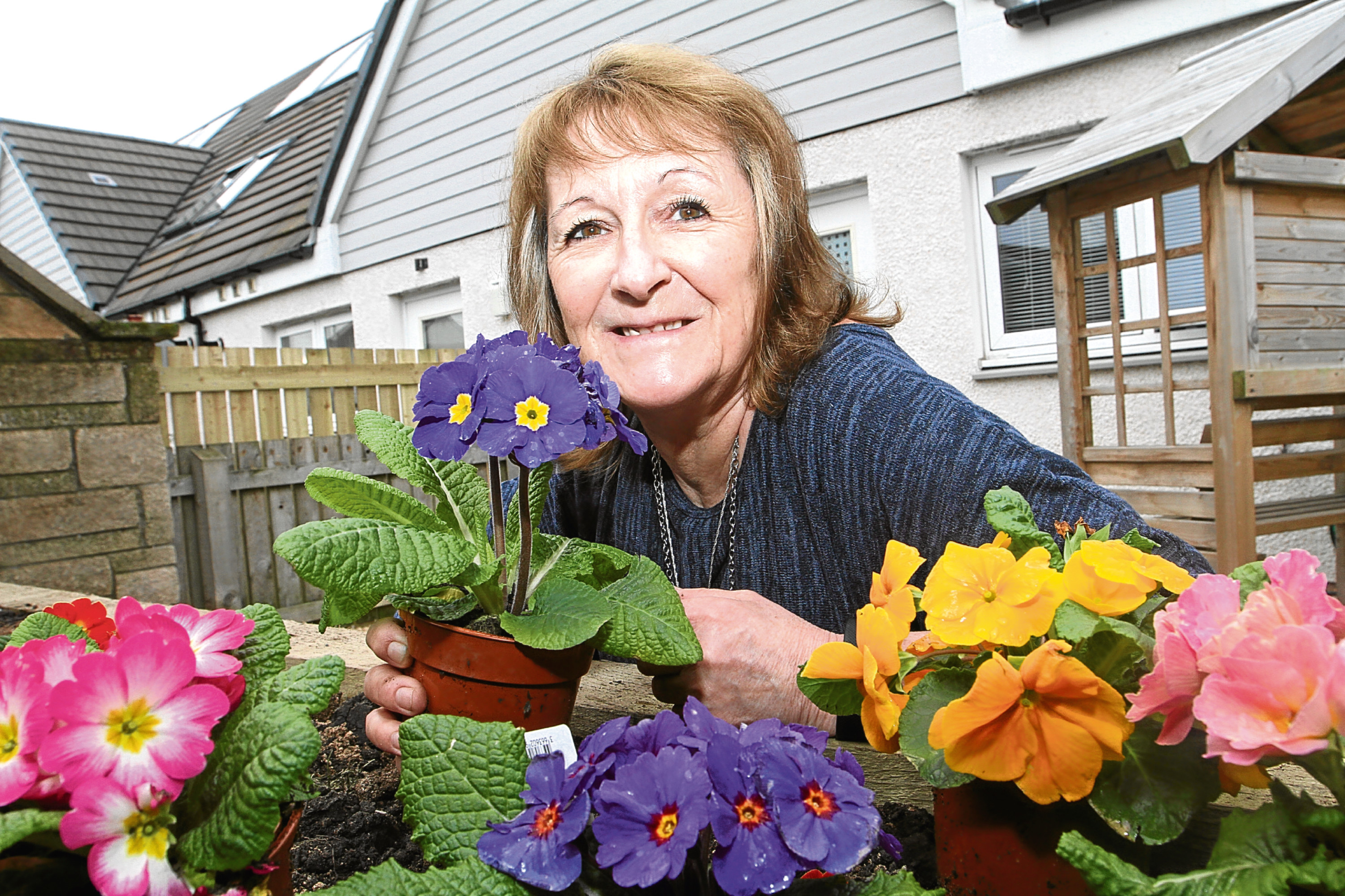 Jane was delighted with her new plants in her garden makeover.