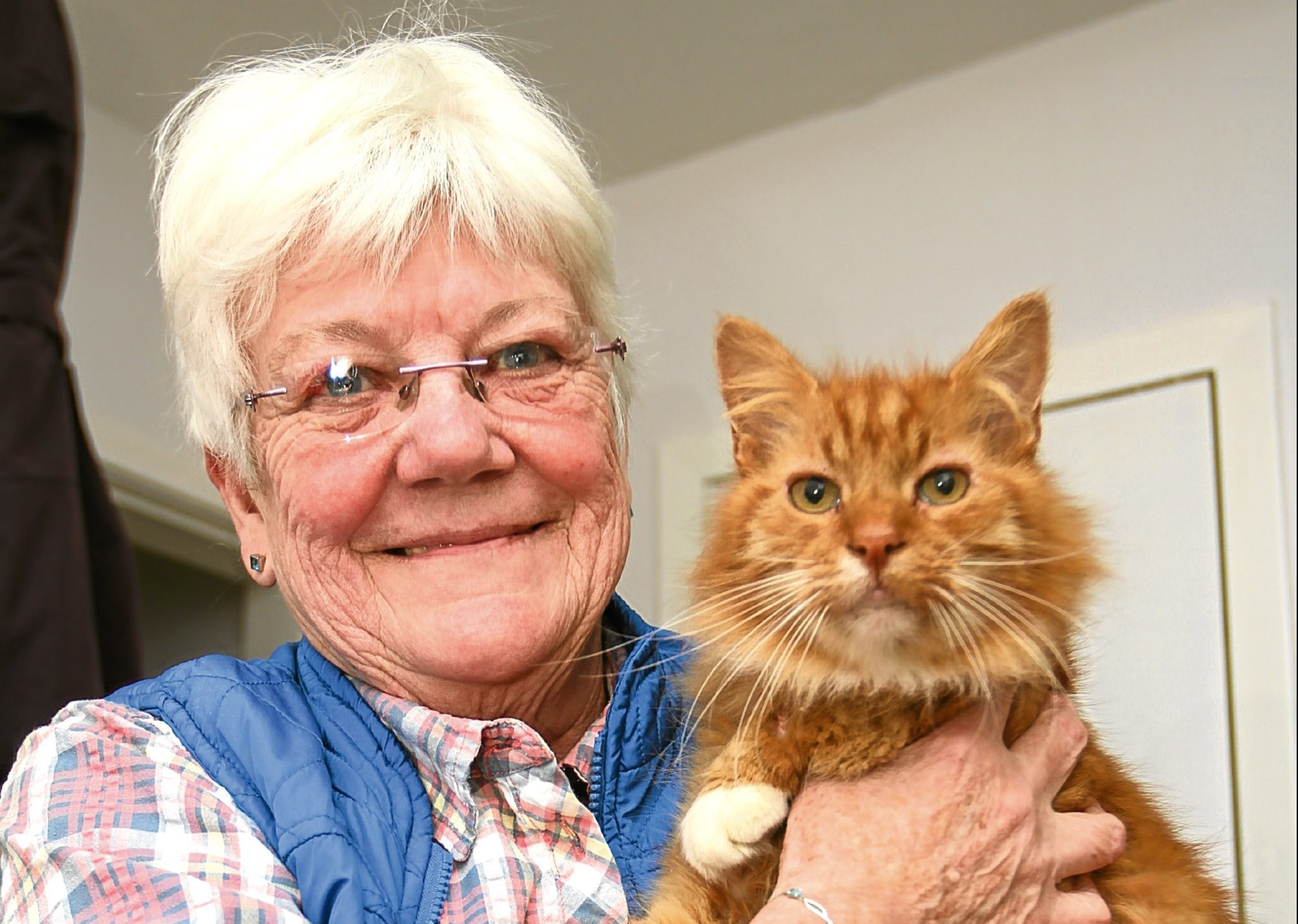 Cats Protection co-ordinator Irene Brown with Sandy