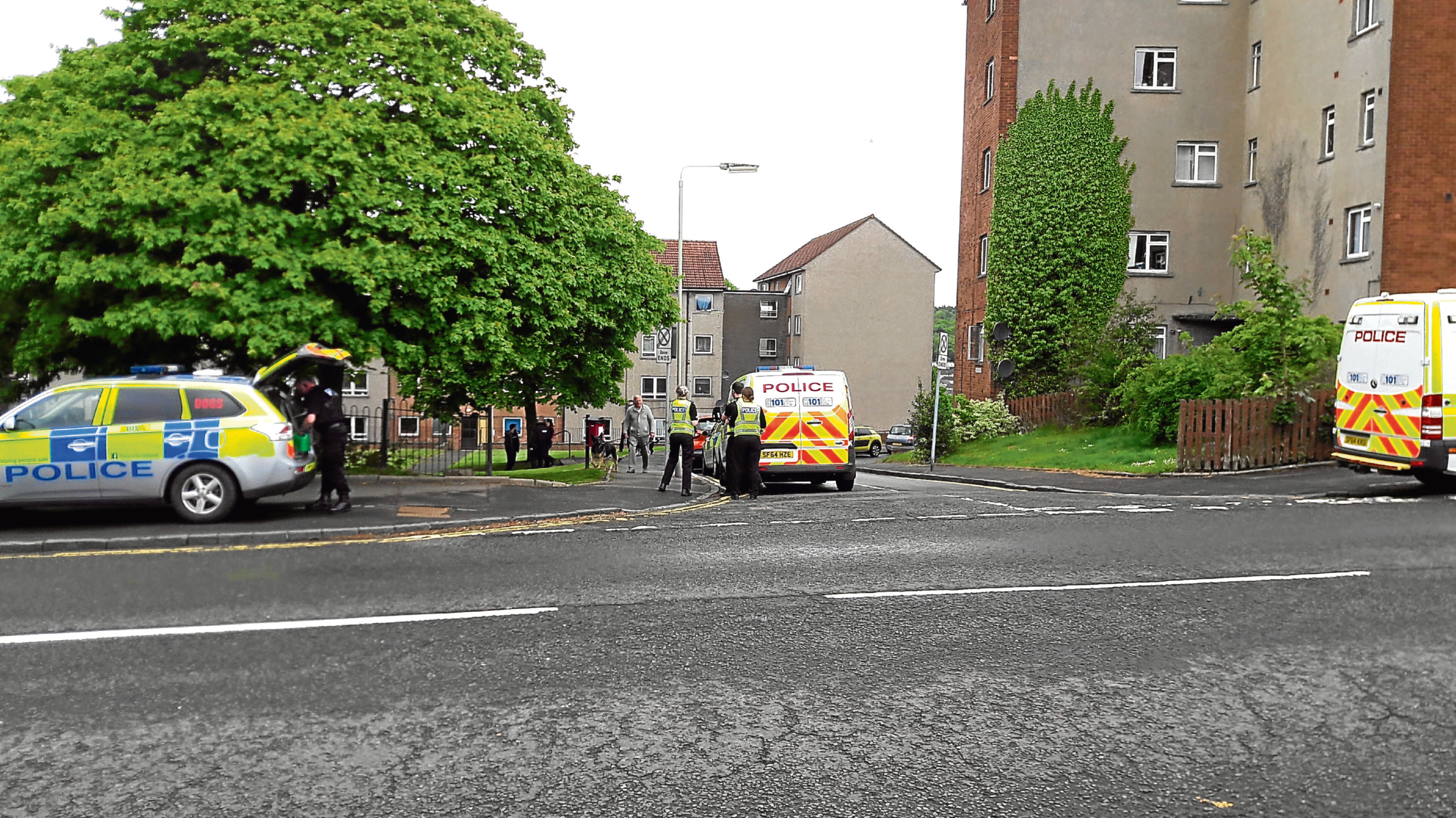 Several police vehicles and officers descended on a flat in Forth Crescent, Menzieshill.