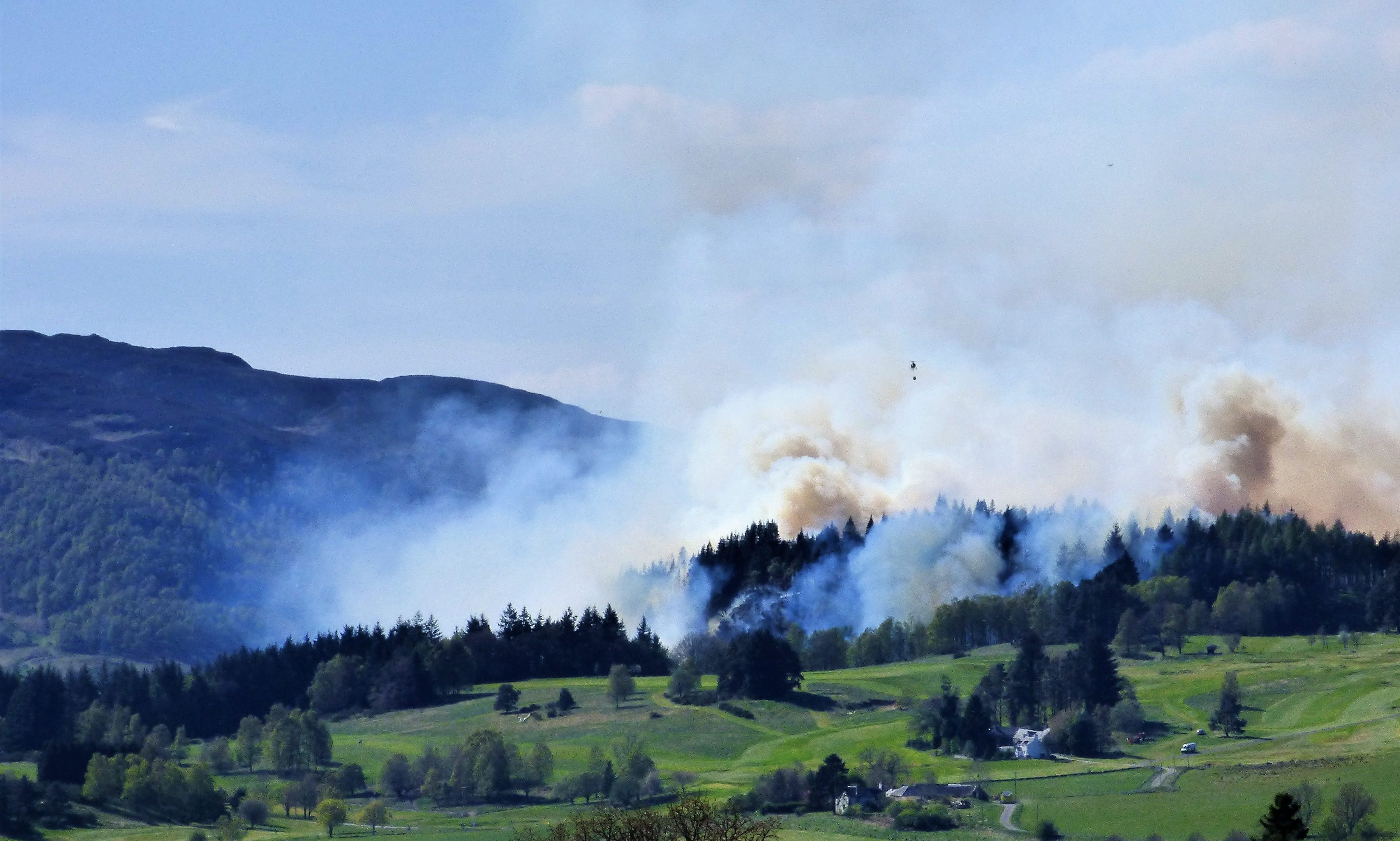 Fire raged in the forest yesterday afternoon (pictures by Marie and Sandy Reid)