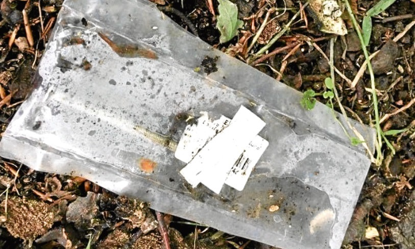 The syringe found on the nature trail.