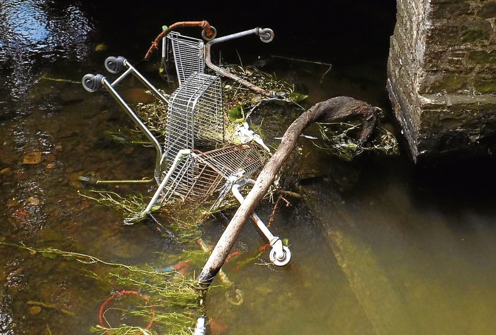Shopping trolleys are among the mess which has been dumped in the Dighty Burn near Drumgeith Park.