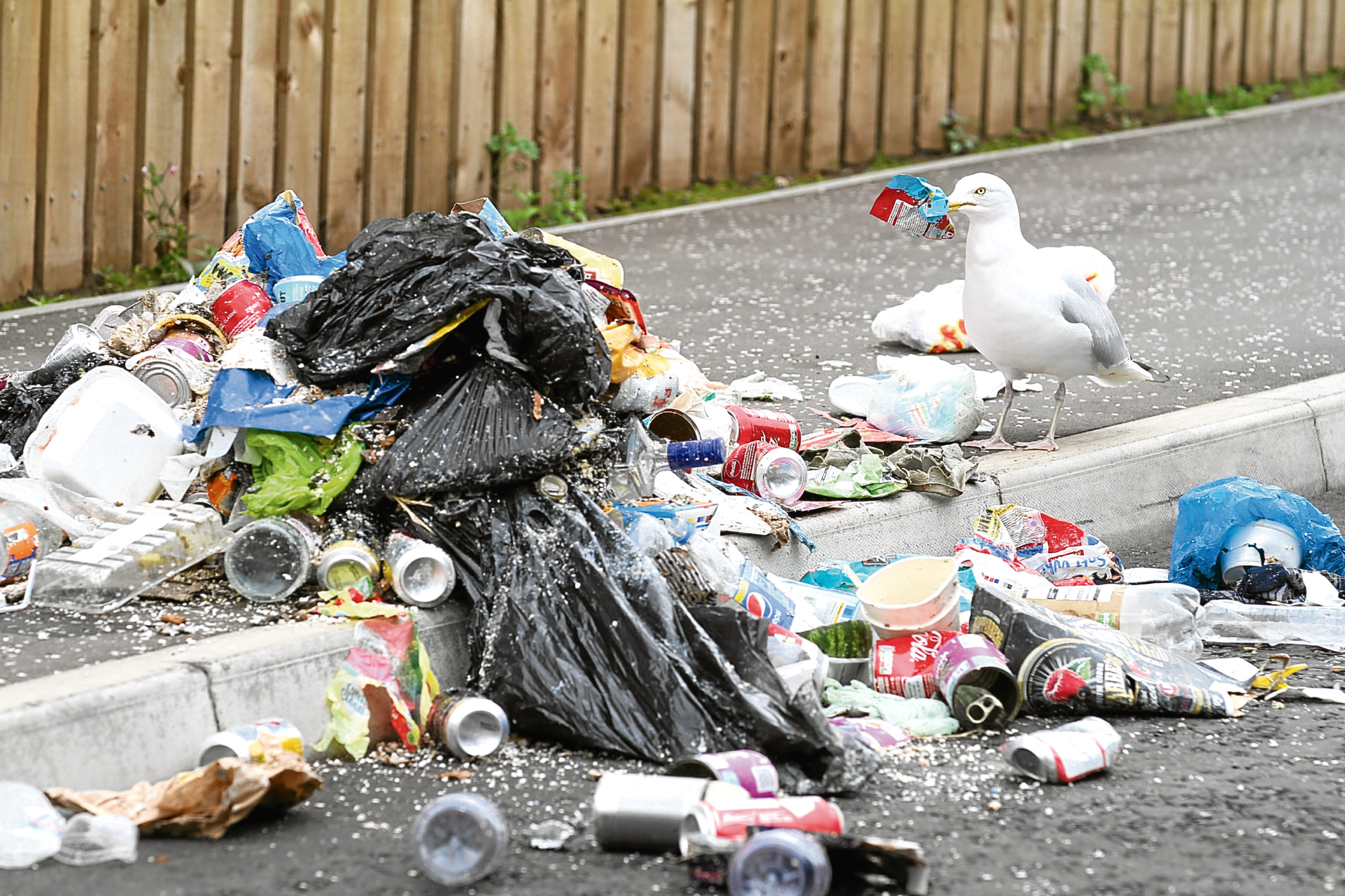 Dundee City Council hopes sights like these will be a thing of the past under its new strategy.