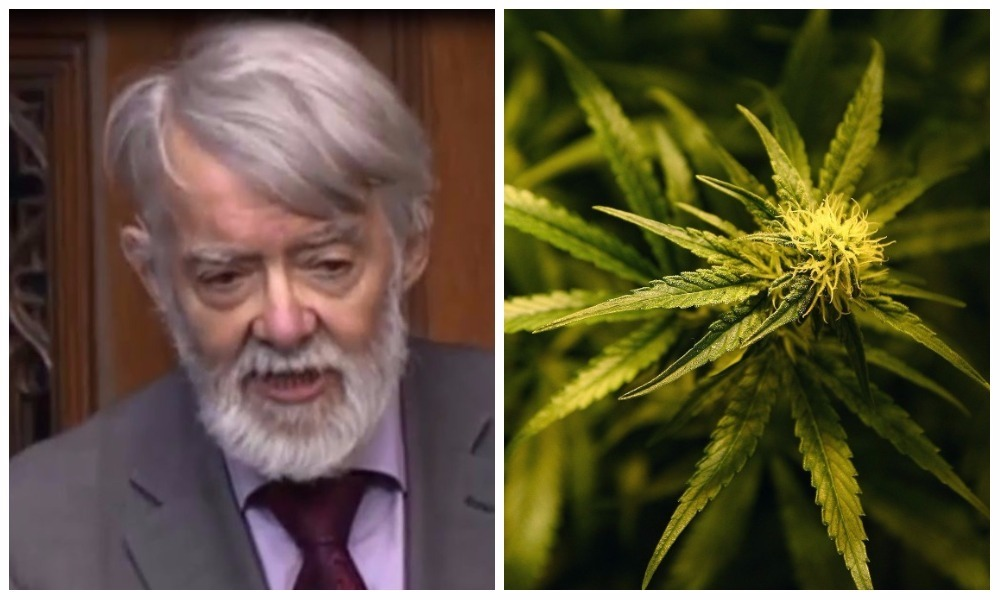 """Labour former frontbencher Paul Flynn said his call would """"challenge the Government"""" and authorities to """"arrest them and take them in"""""""