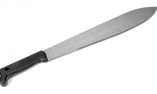 A machete (stock image)