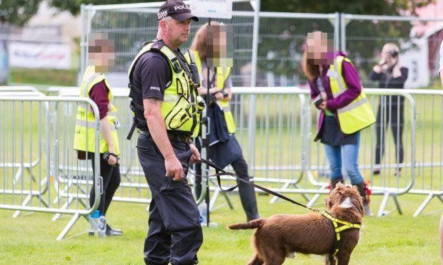 Police dogs were at the entrance of the festival to sniff out controlled substances.