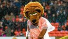 Dundee United mascot Terry the Terror
