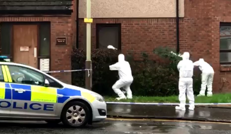 Police search bushes outside Dundonald Court on Arklay Street