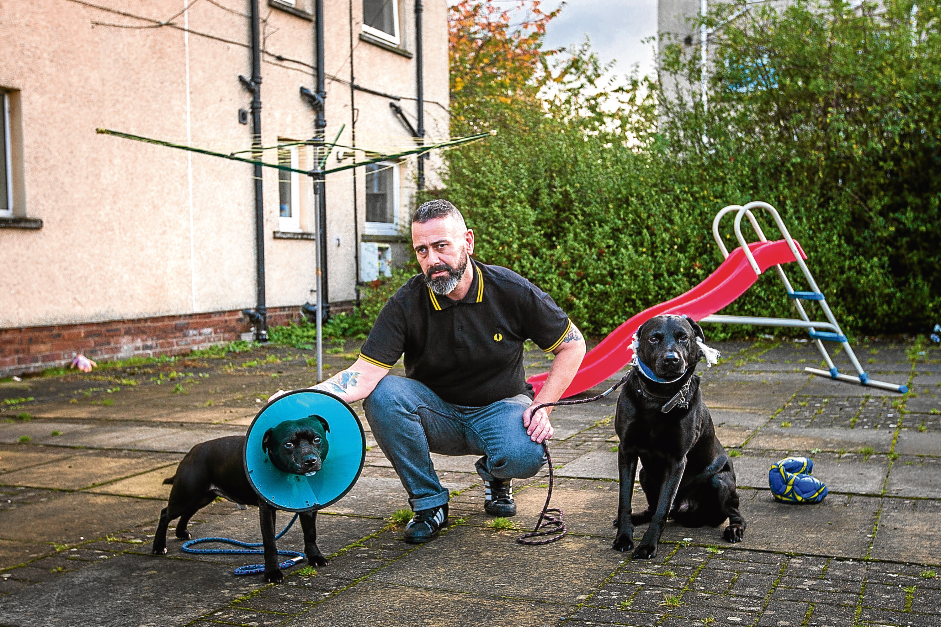 Brian McAllister alongside Staffie Laz, left, and Labrador Sam in the area where they were attacked by the two dogs.