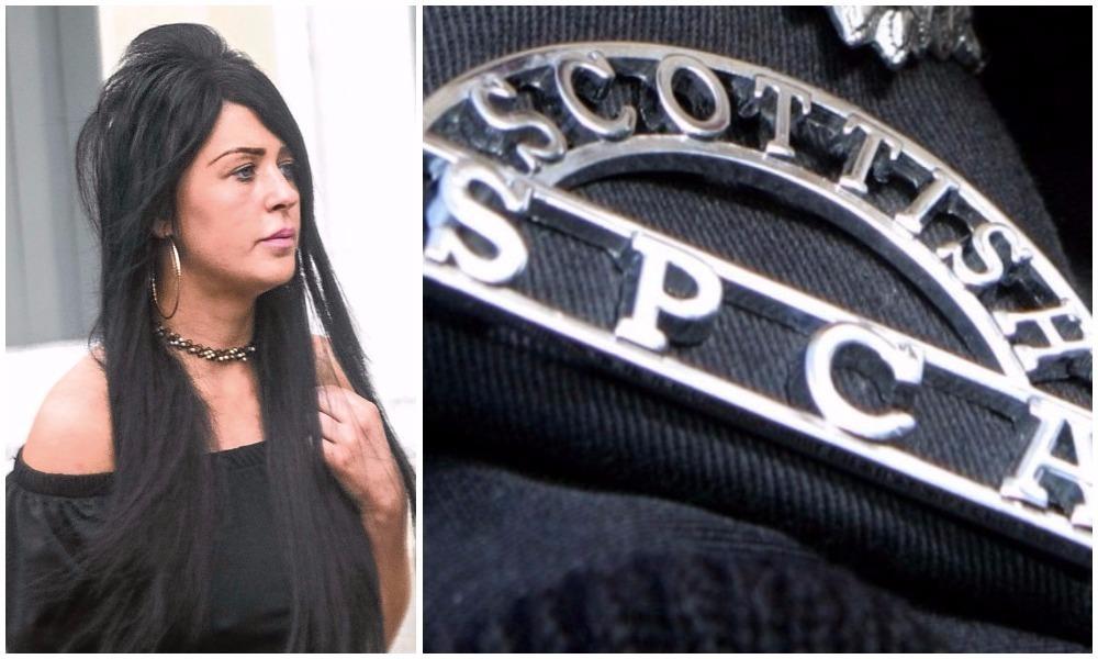 Jaimie Colquhoun could face jail, a sheriff has said.