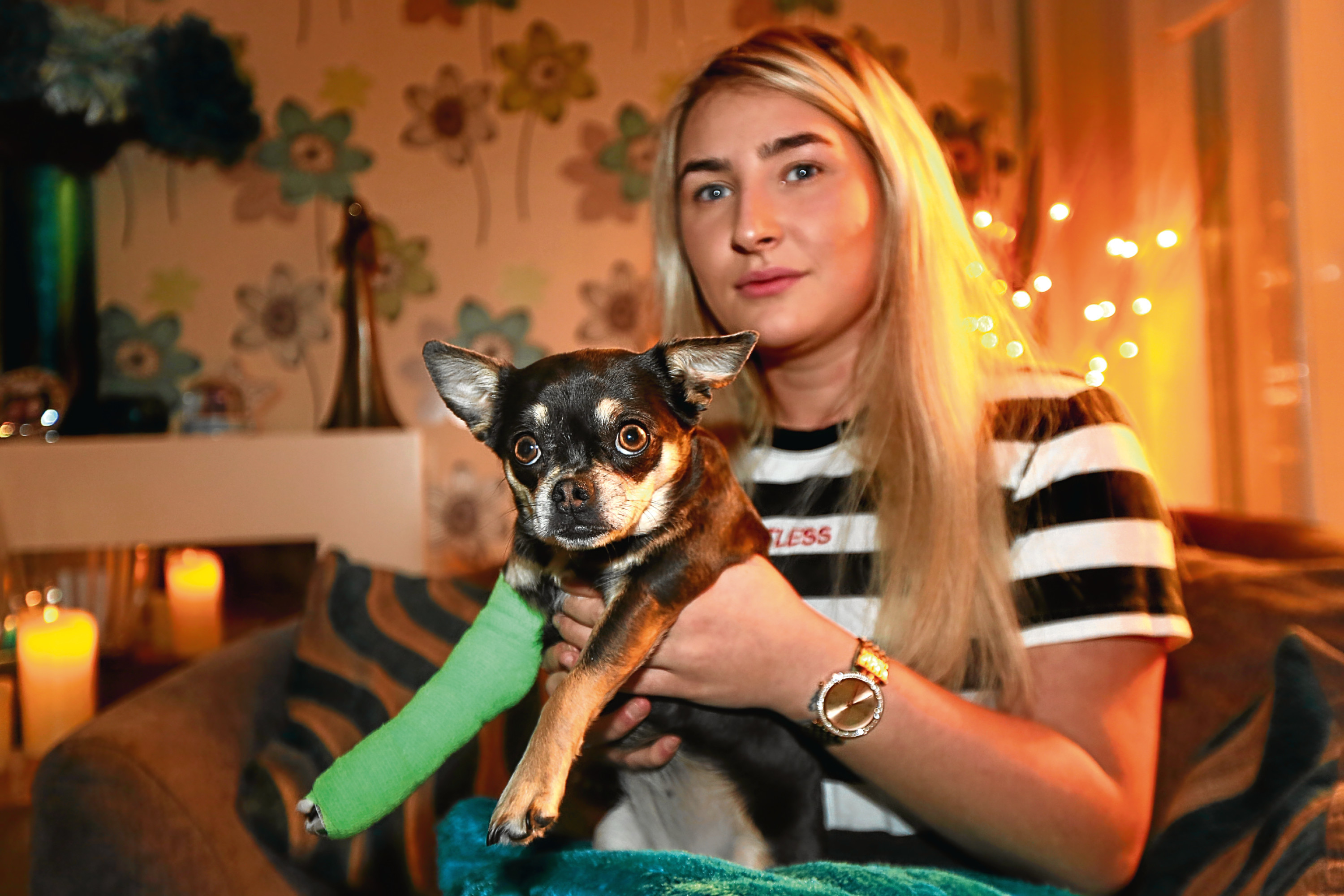 Cally Wright's dog, Lulu was hit by a man driving a silver Mercedes who drove off